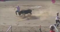 Protestatar ranit in Franta la o lupta cu tauri