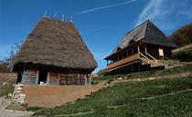 Case Vanatarile Ponorului