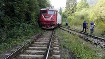 Trenul deraiat (foto arhiva)