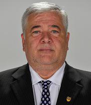 Marius Nicoara, senator PNL