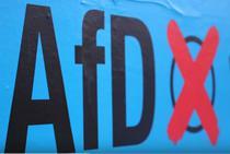 AfD aduce migranti in parlamentul german