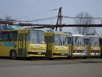 Autobuze oprite in Ploiesti