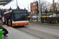 Autobuze Ploiesti