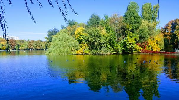 Bucuresti parcul IOR (3)