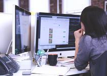 software de afaceri