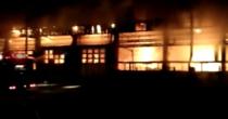 Ard autobuzele din Tulcea