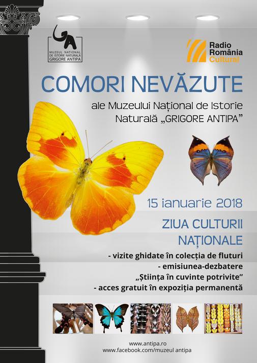 Antipa_comori_nevazute