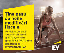 EY VAT Check