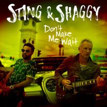 Sting si Shaggy