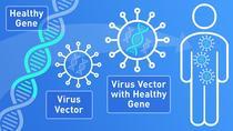 Cum functioneaza terapia genica