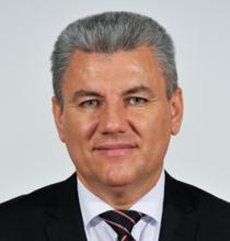 Ioan Denes, senator PSD