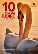10_Zile_Iubire