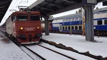 Trenuri pe vreme de iarna