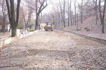 Demolare Parcul Romniceanu