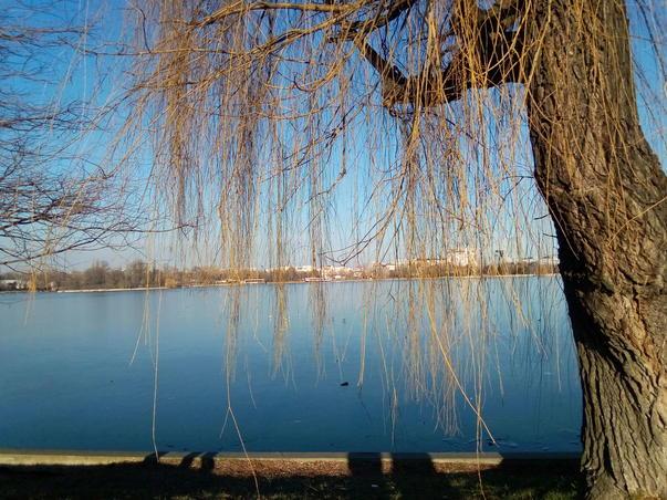 Parcul Herastrau (2)