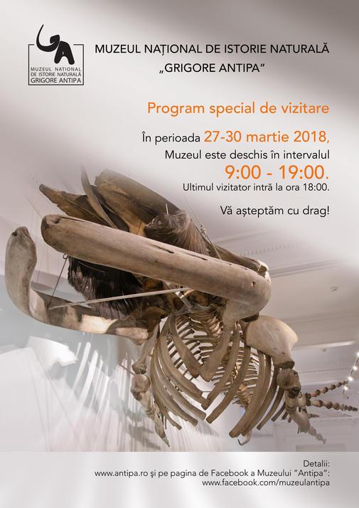 Program vizitare