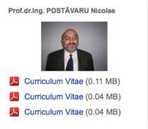 Nicolae Postavaru