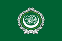 Steag - Liga Araba
