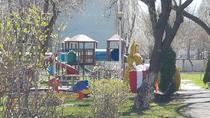 Iepurasi in curtea gradinitelor din Bucuresti (1)