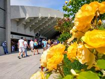 Roland Garros alei