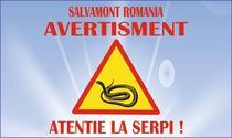 Atentie la serpi