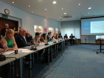 Imagine din timpul conferinei