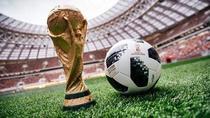 Trofeul Cupei Mondiale de Fotbal