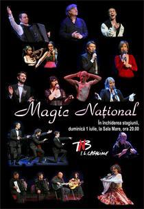 Concertul-spectacol Magic National