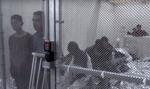 Imigranti in celule