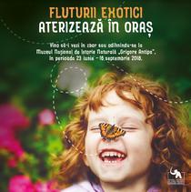 Expozitia 'Fluturii exotici aterizeaza in oras'