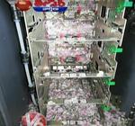 Bancomat distrus de rozatoare