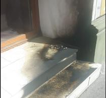 Sediul PSD Satu Mare, afectat de sticle incendiare