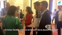 Elvira Sarapartin (PSD) ii dracuieste pe USR-isti