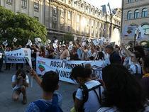 protest Rosia Monta