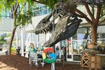 Dinozaurul Stan la Google Campus