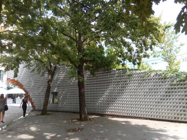 Zidul cu flori (3)