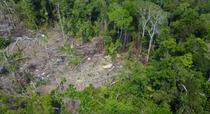 Trib izolat în Amazonia
