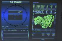 IoT in ferme