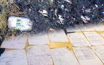 Documente arse in Bulgaria