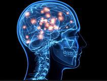Cum functioneaza bilingvismul la nivel neuronal