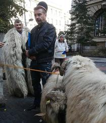 Protest al ciobanilor