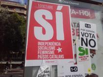 Afi referendum catalan