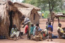 Saracie in Africa