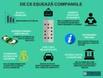 Infografic - esecul in afaceri