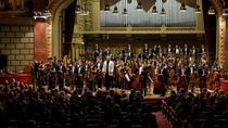 Orchestra Română de Tineret: Foto Virgil Oprina