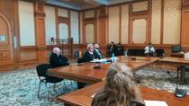 Doina Gradea - audieri la Parlament