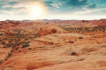 Desertul din Arizona