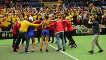 Romania si bucuria victoriei