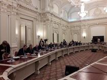 Intalnirea bancherilor cu senatorii ALDE