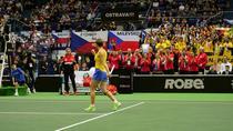 Simona Halep, victorie cu Katerina Siniakova